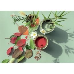 Peintures végétales Marius...